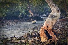 Canoa indonesiana Fotografia Stock