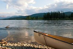 Canoa sul fiume Yukon nel Canada Fotografie Stock