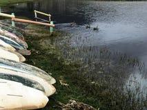 Canoas ao lado de uma lagoa, patos próximo imagens de stock royalty free