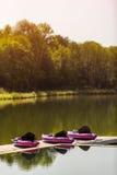 Canoas rosadas en el lago hermoso Fotografía de archivo