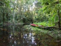 Canoe in the Amazon jungle, Ecudaor Stock Photography