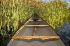 Canoe and cattails Stock Images