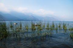Canoe com o pescador atrás do junco com as montanhas enevoadas em Lago Atitlan, San Juan la Laguna, Guatemala, América Central fotografia de stock royalty free