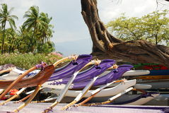 Canoe hawaiane Fotografia Stock Libera da Diritti