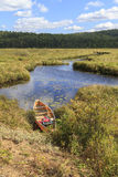 Canoe on Madawaska River. Shoreline in Algonquin Provincial Park, Ontario, Canada Royalty Free Stock Image