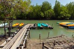Canoe in mangrove Stock Photo