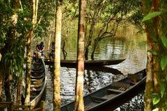 Canoe na água no parque de Yasuni, Equador fotografia de stock royalty free