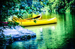 Canoe parcheggiate dal fiume Immagine Stock