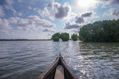 Canoe riding towards Mangrove forest in Munroe Island royalty free stock image