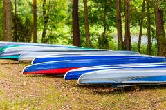 Canoe row in pine forest on shore close-up stock photo