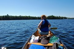 Canoe trip. In calm lake in Algonquin Park Stock Images