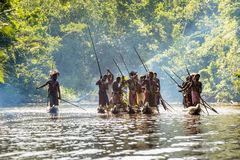 Canoe war ceremony of Asmat Stock Photography
