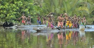 Canoe war ceremony of Asmat Stock Images