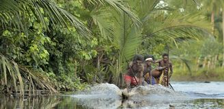 Canoe war ceremony. INDONESIA, IRIAN JAYA, ASMAT PROVINCE, JOW VILLAGE - MAY 23: Canoe war ceremony of Asmat people. Headhunters of a tribe of Asmat . New Guinea Royalty Free Stock Photography