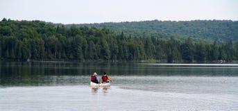Canoeing в парке Algonquin захолустном стоковые изображения rf