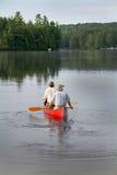 Canoeing в парке Algonquin захолустном стоковое изображение