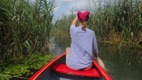 Canoeing on a lake. Canoeing in beautiful natural environment, Lake Tisza, Hungary stock footage