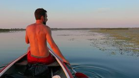 Canoeing on a lake. Canoeing in beautiful natural environment in sunset light stock footage