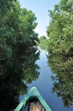 Canoeing in the Danube delta Stock Photo