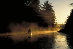 Canoeing at daybreak Stock Image