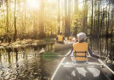 Canoeing down beautiful river in a Cypress Forest. Rear view of two groups of people canoeing on a beautiful river. The warm sun bursts through the thick trees stock image