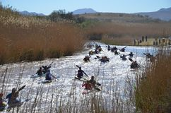 Canoeing in Fish River stock images
