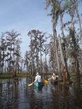 Canoeing no pântano de Manchac Foto de Stock Royalty Free
