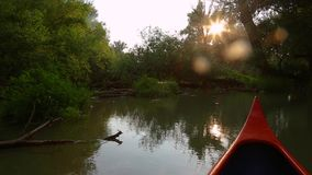 Canoeing on a river. Canoeing in the wilderness, sunlight flares stock video