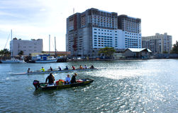 Canoeing in South Florida Stock Image