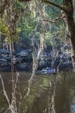Canoeing on the Suwanee River. A family fishing and canoeing in the Suwanee River in Florida Royalty Free Stock Photo