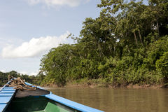 Canoeing In The Tambopata Province Royalty Free Stock Image