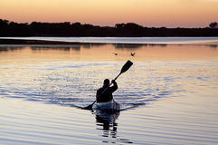 Canoeist on a lake. Early morning canoeing on a lake with sunrise colors and peaceful surroundings Stock Image