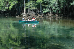 Canoeists_Manatee. Canoeists paddle down the spring run Royalty Free Stock Photos