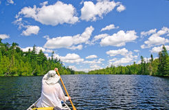 Canoer on a Lake in the North Woods Stock Images