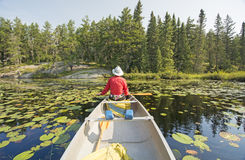 Canoer Relaxing in the Lily Pads Royalty Free Stock Photos
