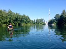 Canoers, das in den Toronto-Inseln, Ontario, Kanada schaufelt Lizenzfreies Stockbild