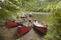 Canoes. Three red canoes docked near a lake shore stock photo