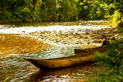 Canoes In Amazon Basin. Single Tree Chopped Canoes In The Amazonian Basin Used To Transport People Crops Materials royalty free stock photos