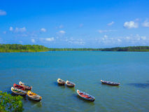 Canoes. In the Arapepo river - Amazonia - Cuiarana - Salinopolis - Brazil Stock Photo