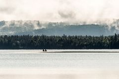 Canada Ontario Lake of two rivers Canoe Canoes on near the water in Algonquin National Park. Canoes floating peacefully on the waters of Lake Louise, Banff Stock Photography