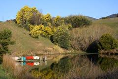 Canoes on a lake, Australia. Colourful canoes on a peaceful lake in Victoria, Australia Stock Image