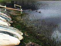 Canoes next to a pond, ducks nearby royalty free stock images
