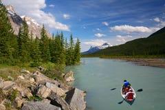 Canoing en el río del arqueamiento en el parque nacional de Banff Imágenes de archivo libres de regalías