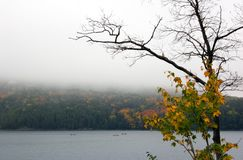 Canoing at Killarney Lake. In overcast day royalty free stock photos