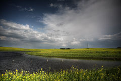 Canola crops surrounding Saskatchewan pothole Stock Images