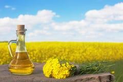 Canola dell'olio di colza sul campo e sul cielo del fondo fotografie stock libere da diritti