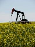 Canola e vertical da bomba de petróleo Imagem de Stock Royalty Free