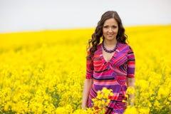Canola field Royalty Free Stock Photos