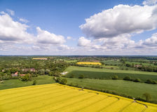 Canola Field Aerial View HDR Royalty Free Stock Photos