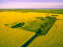 Canola field and agricultural land at sunset in Victoria, Australia. Royalty Free Stock Photo